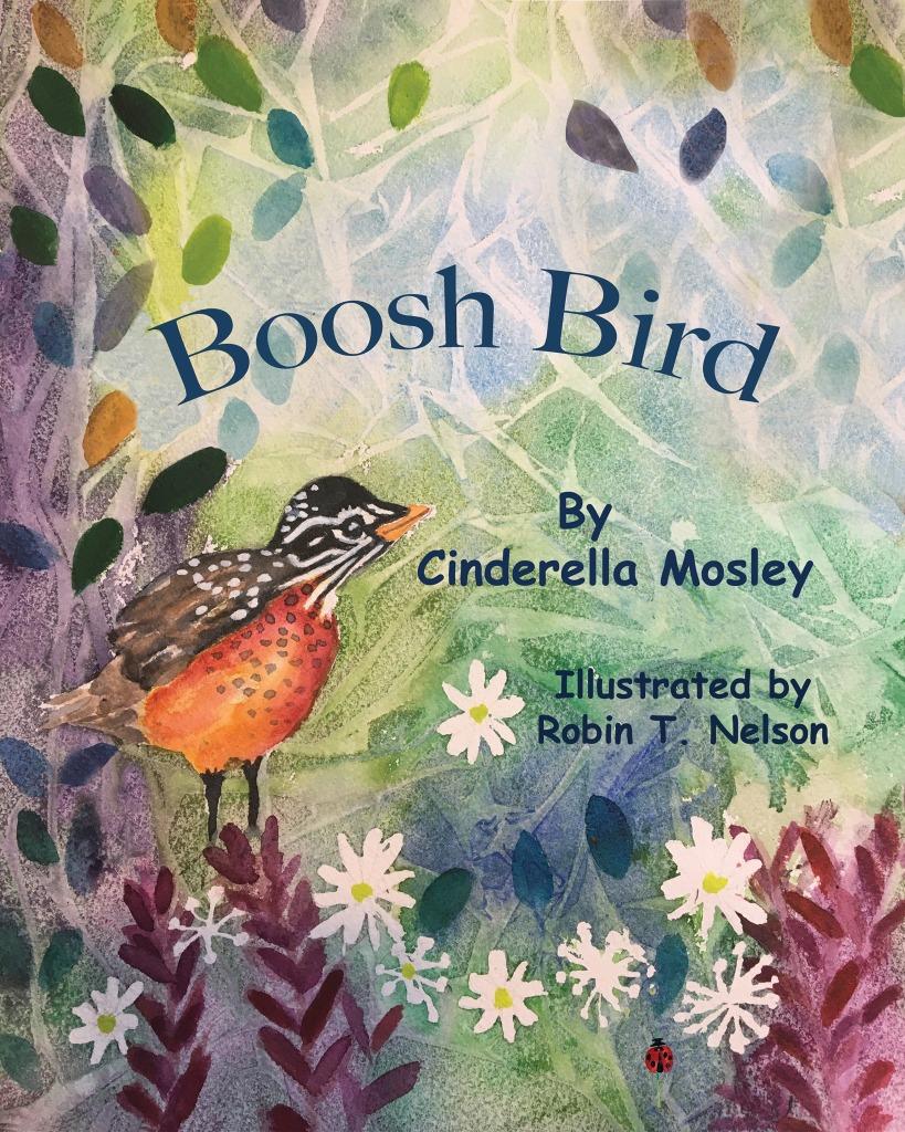 Boosh bird children's book